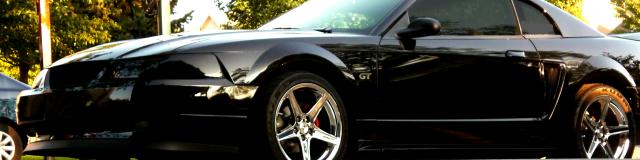 vehicles mustang